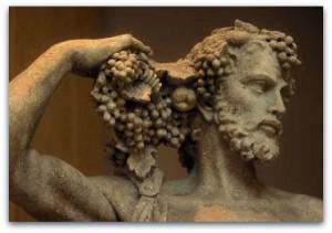bacchus wine le marche italy