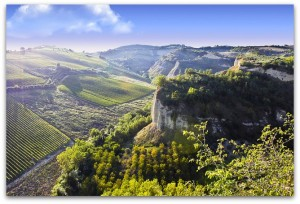 vini rossi le marche italia case