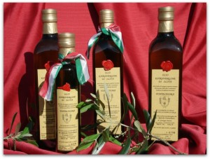 slow food organic olive oil le marche italy